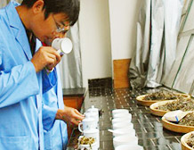 浙江大学茶叶研究所